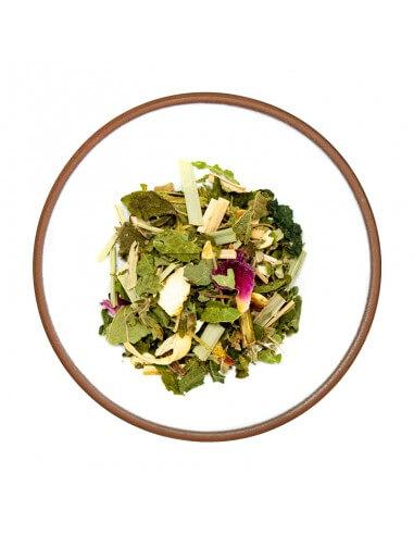 Tè Verde Sencha Fukuoka